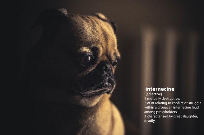 pug_Internecine_v2