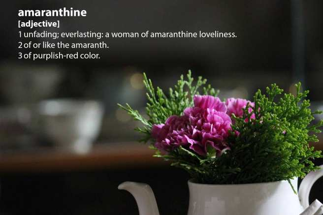 flowers_tea_amaranthine