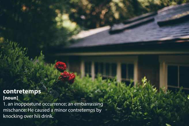 house_contretemps.jpg