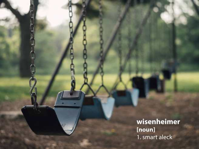 swingset_wisenheimer