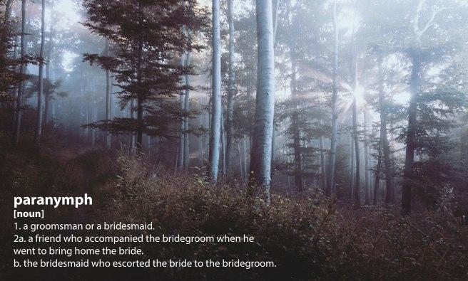 forest_light_paranymph.jpg