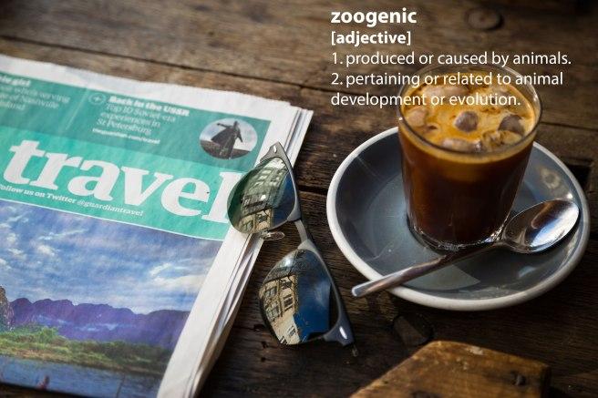 sunglasses2_zoogenic.jpg